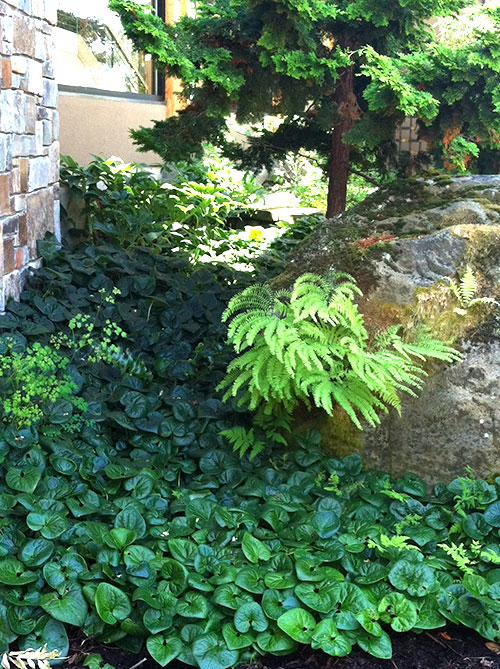 Meticulous Stone Work and Lush Plantings at Kaiser Garden