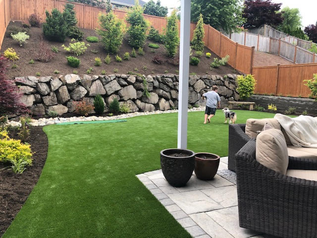 A boy and his dog are running on the turf in their new garden space.     Plants surround the open turf area and beyond is a rock retaining wall     holding a slope with brightly colored trees and shrubs.