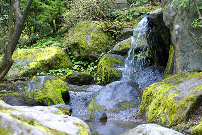 Landscaped waterfall with large rocks and moss