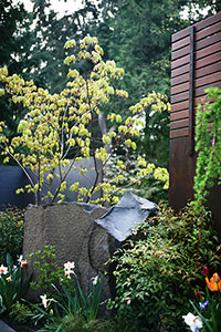 Basalt column & steel boundary for courtyard