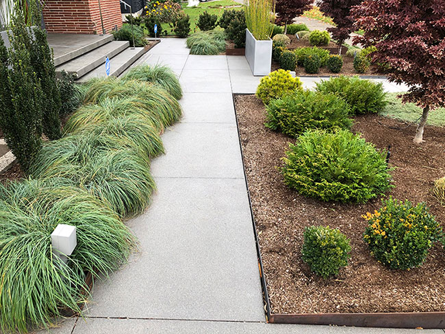 Plants to direct the journey and soften hardscape shapes.